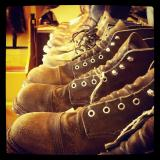 Just a bautifel line of Red Wing's